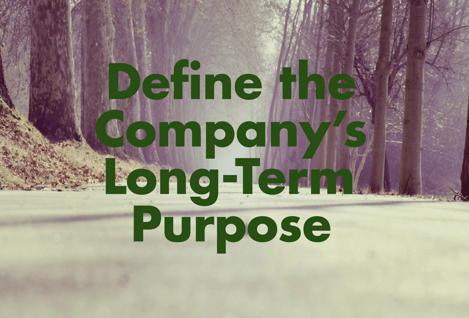 Define the company's long term purpose