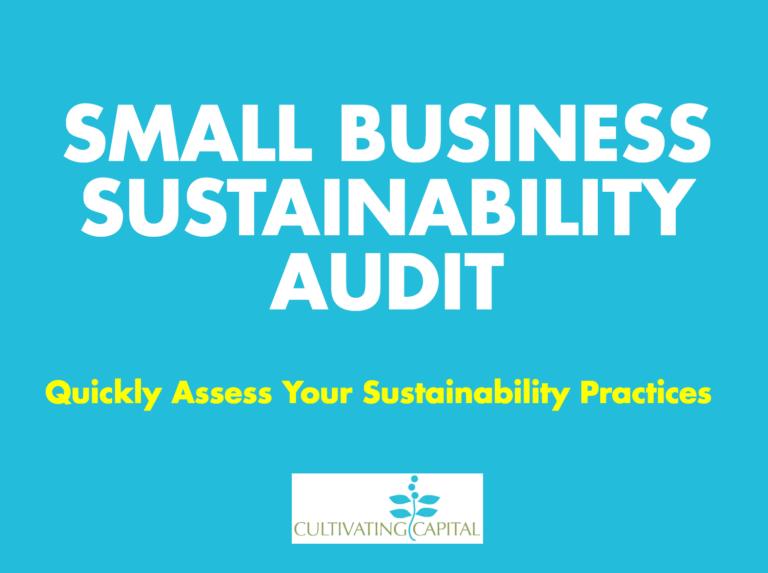 Sustainability Audit